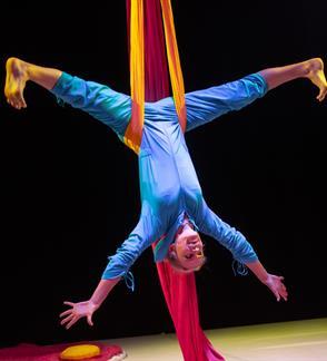 """Šokio teatras  """"Dansema""""   """"Metų laikai"""" šokio cirko spektaklis 3-6 metų vaikams"""
